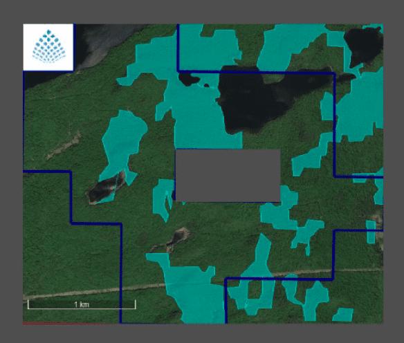 Tartisan Nickel Target Areas Sill Lake Claims