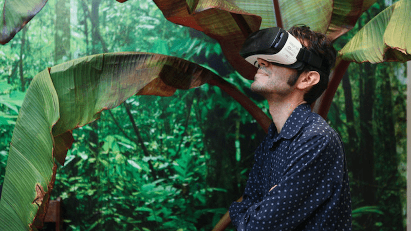 ydx innovations vr jungle