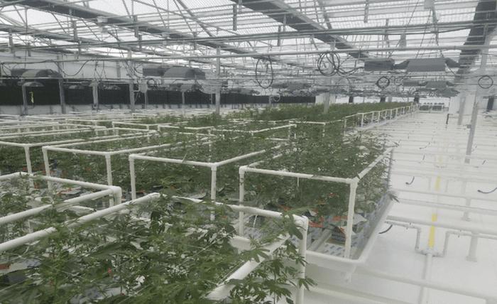 crop infrastructure