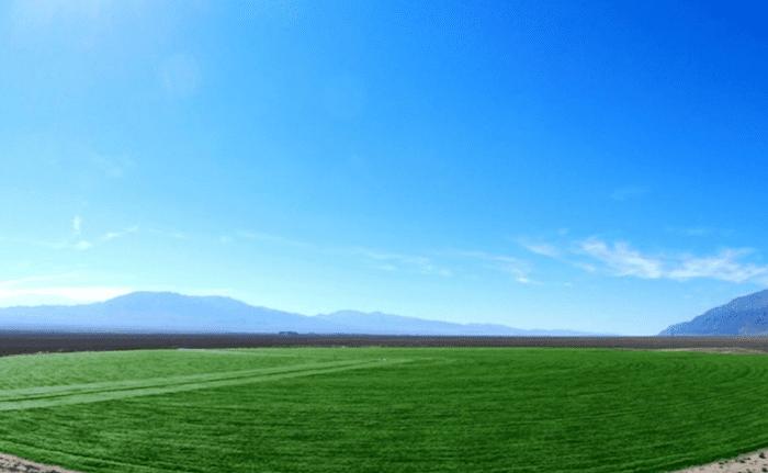 crop infrastructure nevada