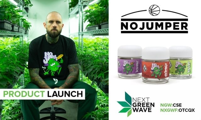 no jumper product launch advertisement