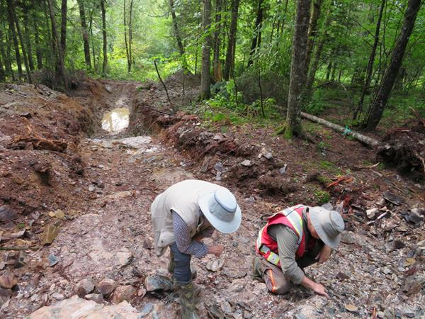 beauce gold mining trench