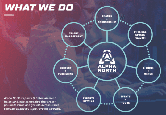 alpha north information