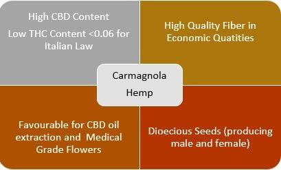 hemp for health carmagnola table