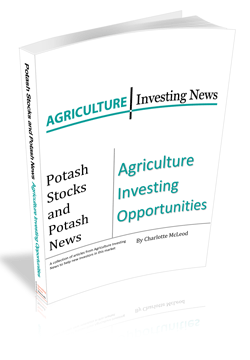 Potash Stocks and Potash News: Agriculture Investing Opportunities