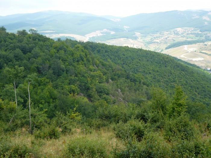 Avrupa Minerals Gossan Slivovo