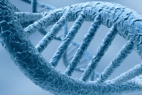 What Is CRISPR and Why Should Investors Care?