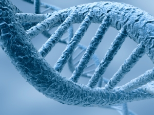 Understanding Areas of Genetic Research