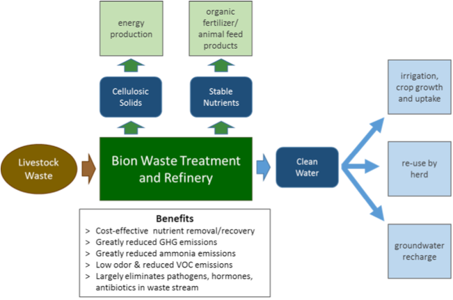 bion environmental biological nutrient removal