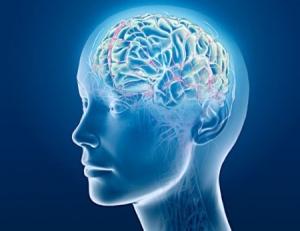 Alzheimer's Disease: Have Researchers Identified Ground Zero?