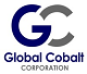 Global Cobalt Appoints Andrey Melnikov CEO